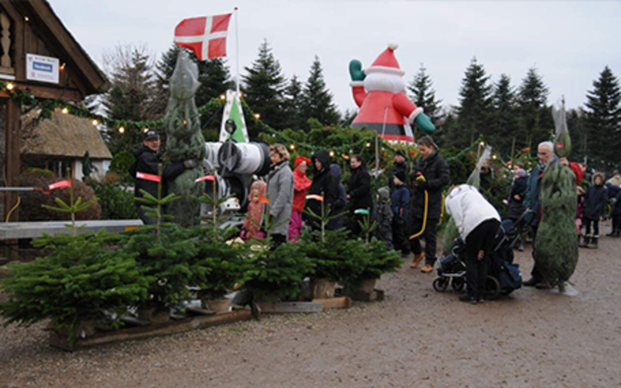 Mosegaardens Juletræssalg